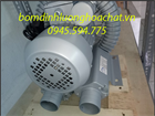 Máy thổi khí con sò Dolphin DB-3000S/2