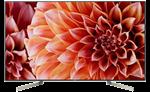 Smart Tivi Sony 49 inch KD-49X9000F