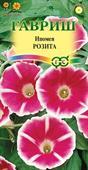 Morning Glory Rosita