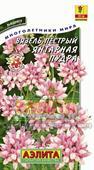 Hoa cầu thơm hồng