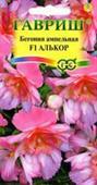 Thu hải đường  Alcor F1 hồng rủ