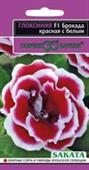 Tử la lan kép hồng viền trắng