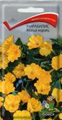 Bông phấn vàng (Mirabilis kẹo vàng)