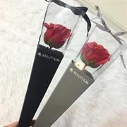 Hoa hồng 1 bông