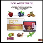 Kem tái sinh khôi phục Collagen Hàn Quốc || Collagen Rebirth