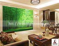 Vách xuyên sáng phòng khách in rừng trúc đẹp