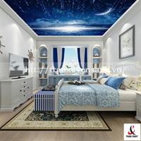 Mẫu trần phòng ngủ xuyên sáng in bầu trời mưa sao băng