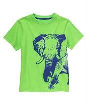 Phông Elephant bé trai Gymboree