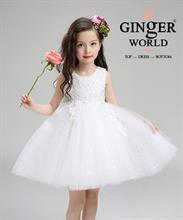 Đầm Công Chúa Ren Rơi Tùng Voan HQ489_T GINgER WORLD