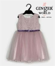 Đầm Dự Tiệc Cho Bé HQ541 GINgER WORLD