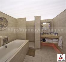 Mẫu trần nhà tắm xuyên sáng số 2