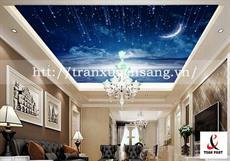 Trần phòng khách xuyên sáng in bầu trời số 14