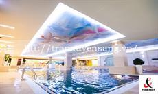 Mẫu trần xuyên sáng bể bơi trong nhà số 6