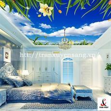 Mẫu trần phòng ngủ xuyên sáng in bầu trời số 3