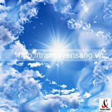 40 mẫu tấm xuyên sáng in bầu trời xanh