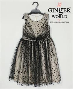 Đầm Dự Tiệc Cho Bé HQ550 GINgER WORLD
