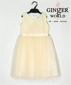 Đầm Dự Tiệc Cho Bé HQ552 GINgER WORLD
