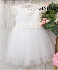 Đầm Dự Tiệc Cho Bé HQ726 GINgER WORLD