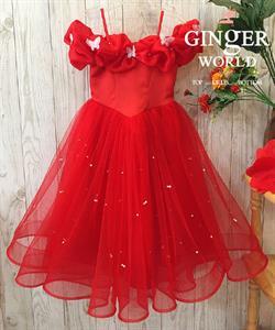 Đầm Dự Tiệc Cho Bé HQ747 GINgER WORLD