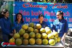 Giới trẻ mở điểm bán bưởi Phúc Trạch giúp dân sau bão
