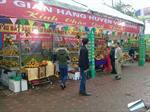 Cam khe mây, bưởi phúc trạch tham dự lễ hội cam và các sản phẩm nông nghiệp lần thứ nhất