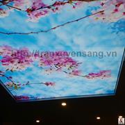Thi công trần xuyên sáng Mr. Trung Resort Flamingo - Đại Lải