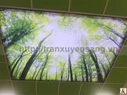 Thi công trần xuyên sáng tại Bệnh Viện Sản Nhi Phú Thọ