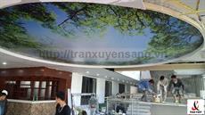 Dự án thi công trần xuyên sáng tại khách sạn Phú Gia - Hòa Bình