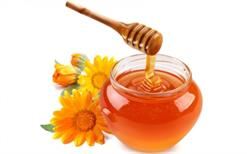 Mật ong hoa bạc hà có tác dụng gì ?