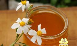 Mật ong hoa xuyến chi (mật ong cỏ kim)