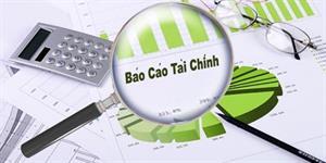 Báo cáo tài chính riêng lẻ và hợp nhất, ý nghĩa và những điều cần lưu ý