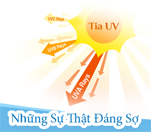 Những điều cần biết về tia cực tím (UV)