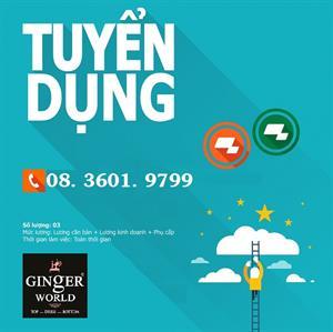 CÔNG TY GINGER WORLD TUYỂN DỤNG VỊ TRÍ SEO & SALES ONLINE