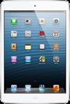 iPad Mini 2 Retina Cellular 128GB