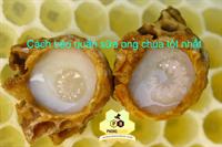 Cách bảo quản sữa ong chúa | Mọi điều cần biết