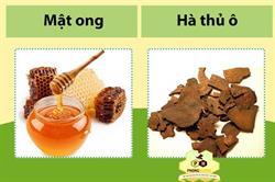 Mật ong hà thủ ô có tác dụng gì cho sức khỏe
